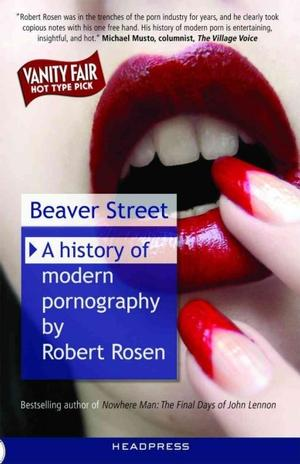 Beaver Street: A History of Modern Pornography Sexuality