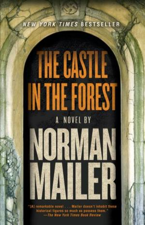 The Castle in the Forest Lower Priced Than E-Books